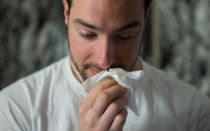 Аллергия на шпица
