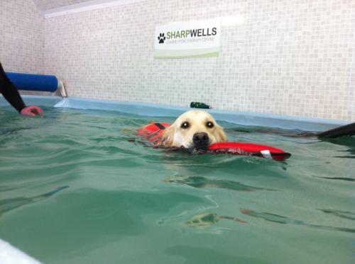 плаванье при артрите
