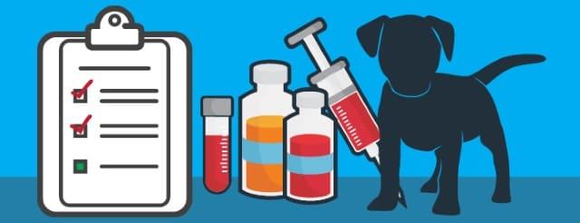лечение лептоспироза
